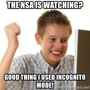 Internet Kid Troll - The NSA is watching? Good thing I used incognito mode!