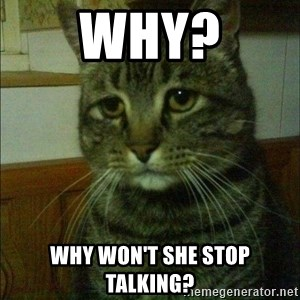 Depressed cat 2 - Why? Why won't she stop talking?