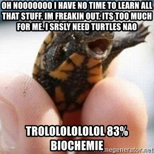 angry turtle - oh nooooooo i have no time to learn all that stuff, im freakin out. its too much for me. i srsly need turtles nao trolololololol 83% Biochemie