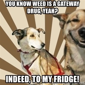 Stoner dogs concerned friend - You know weed is a gateway drug, yeah? Indeed, to my fridge!
