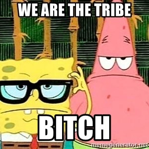 Serious Spongebob - We Are The Tribe Bitch