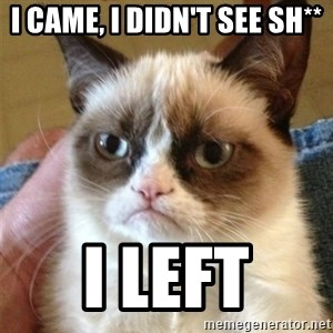 Grumpy Cat  - i came, i didn't see sh** i left