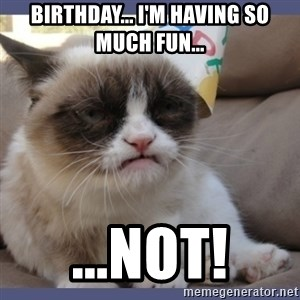 Birthday Grumpy Cat - Birthday... I'm having so much fun... ...NOT!