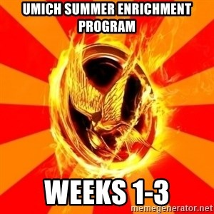 Typical fan of the hunger games - UMICH Summer Enrichment Program Weeks 1-3