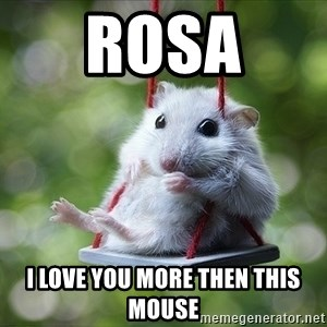 Sorry I'm not Sorry - Rosa  I love you more then this mouse