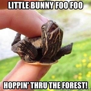 excited turtle - little bunny foo foo hoppin' thru the forest!