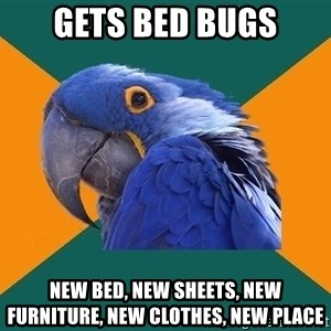 Paranoid Parrot - Gets bed bugs New bed, new sheets, new furniture, new clothes, new place