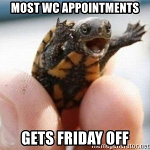 angry turtle - Most WC Appointments Gets Friday off