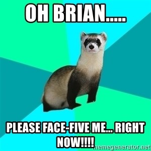 Obvious Question Ferret - Oh Brian..... Please face-five me... RIGHT NOW!!!!