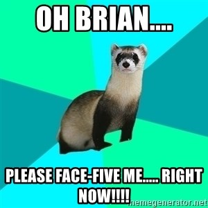 Obvious Question Ferret - Oh Brian.... Please face-five me..... RIGHT NOW!!!!