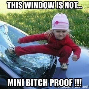 Angry Karate Girl - THIS WINDOW IS NOT... MINI BITCH PROOF !!!