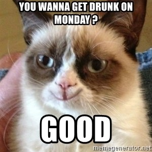 Tard the happy cat - You wanna get drunk on Monday ? GOOD