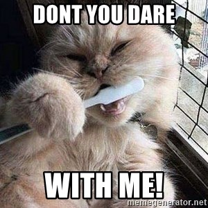 Pussy Brushes  - Dont you dare With Me!