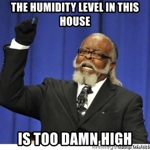 Too high - The humidity level in this house Is too damn high
