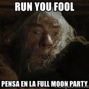 gandalf run you fools closeup - RUN YOU FOOL PENSA EN LA FULL MOON PARTY