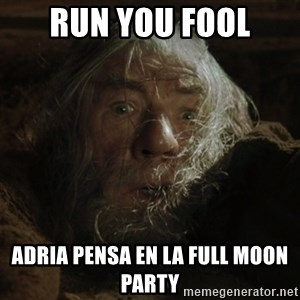 gandalf run you fools closeup - RUN YOU FOOL ADRIA PENSA EN LA FULL MOON pARTY