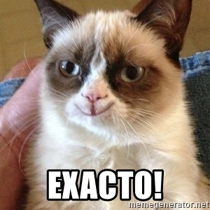 Grumpy Cat Happy Version -  EXACTO!