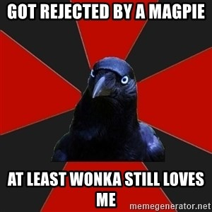 Gothiccrow - got rejected by a magpie at least wonka still loves me