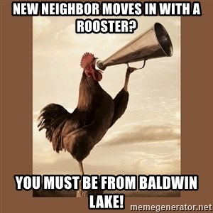 Rooster - new neighbor moves in with a rooster? You must be from baldwin lake!