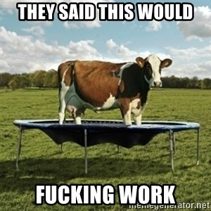 Unimpressionable Cow - they said this would FUCKING work
