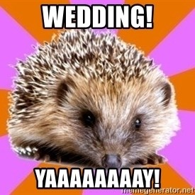 Homeschooled Hedgehog - Wedding! Yaaaaaaaay!