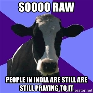 Coworker Cow - soooo raw people in india are still are still praying to it