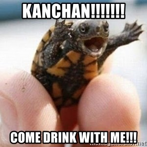 angry turtle - Kanchan!!!!!!! Come drink with me!!!