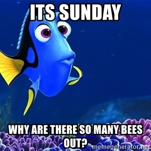Forgetful Dori - Its Sunday Why are there so many bees out?