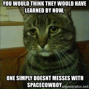 Depressed cat 2 - you would think they would have learned BY NOW,  ONE SIMPLY DOESNT MESSES WITH SPACECOWBOY