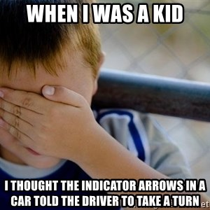 Confession Kid 1 - When i was a kid i thought the indicator arrows in a car told the driver to take a turn
