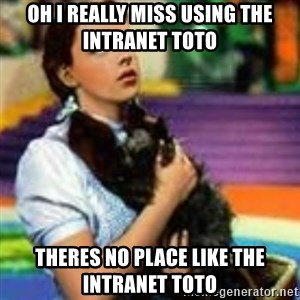dorothy toto - oh i really miss using the INTRANET TOTO THERES NO PLACE LIKE THE INTRANET TOTO