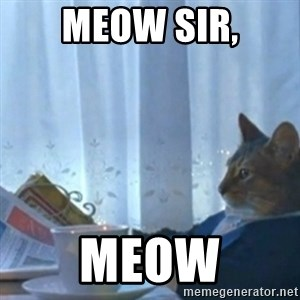 Sophisticated Cat Meme - Meow sir, Meow