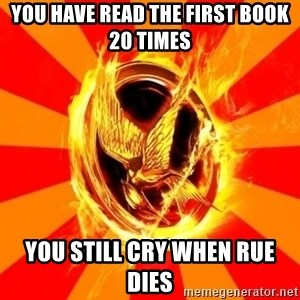 Typical fan of the hunger games - You have read the first book 20 times You still cry when Rue dies