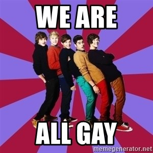 typical 1D - WE ARE  ALL GAY