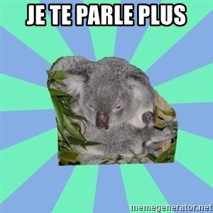 Clinically Depressed Koala - JE TE PARLE PLUS