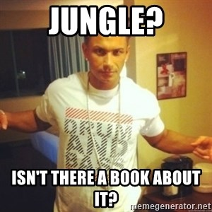 Drum And Bass Guy - Jungle? Isn't there a book about it?
