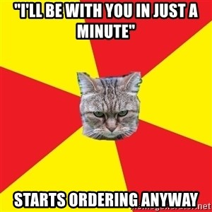 """Fast Food Feline - """"I'll be with you in just a minute"""" Starts ordering anyway"""