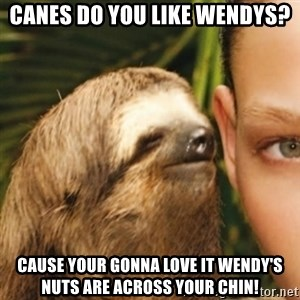 Whispering sloth - Canes do you like Wendys? Cause your gonna love it Wendy's nuts are across your chin!