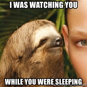 Whispering sloth - I was watching you While you were sleeping