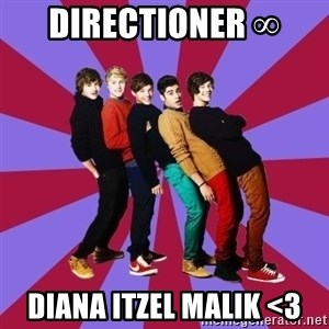 typical 1D - Directioner ∞  Diana Itzel MALIK <3