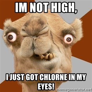 Crazy Camel lol - im not high,  i just got chlorne in my eyes!