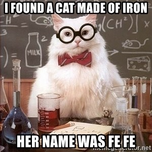 Chemistry Cat - I found a cat made of iron Her name was FE FE