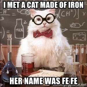 Chemistry Cat - I met a cat made of iron  Her name was Fe Fe