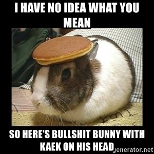Bunny with Pancake on Head - I HAVE NO IDEA WHAT YOU MEAN SO HERE'S BULLSHIT BUNNY WITH KAEK ON HIS HEAD