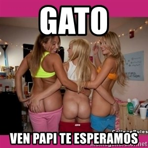 3 Lesbians Showing And Fingering Their Ass - GATO  VEN PAPI TE ESPERAMOS