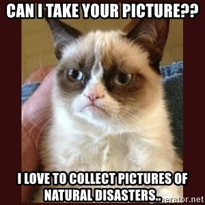 Tard the Grumpy Cat - Can I take your picture?? I love to collect pictures of natural disasters..