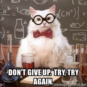 Chemistry Cat -  Don't give up.  Try, try again.