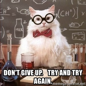 Chemistry Cat -  Don't give up.    Try and Try Again.