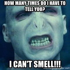 Angry Voldemort - HOW MANY TIMES DO I HAVE TO TELL YOU? I CAN'T SMELL!!!