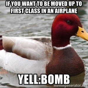 Malicious advice mallard - if you want to be moved up to first class in an airplane yell:bomb